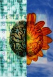 B0003920 Left and right brain function - artwork